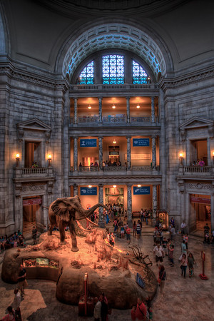 Smithsonian Natural History Museum.